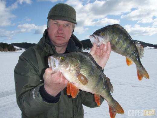 в швецию на рыбалку туры